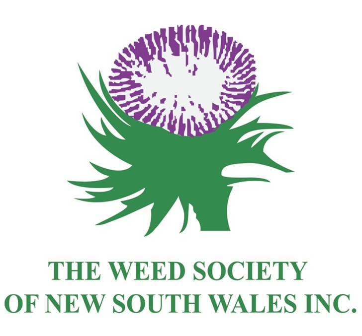 Weed Society Website